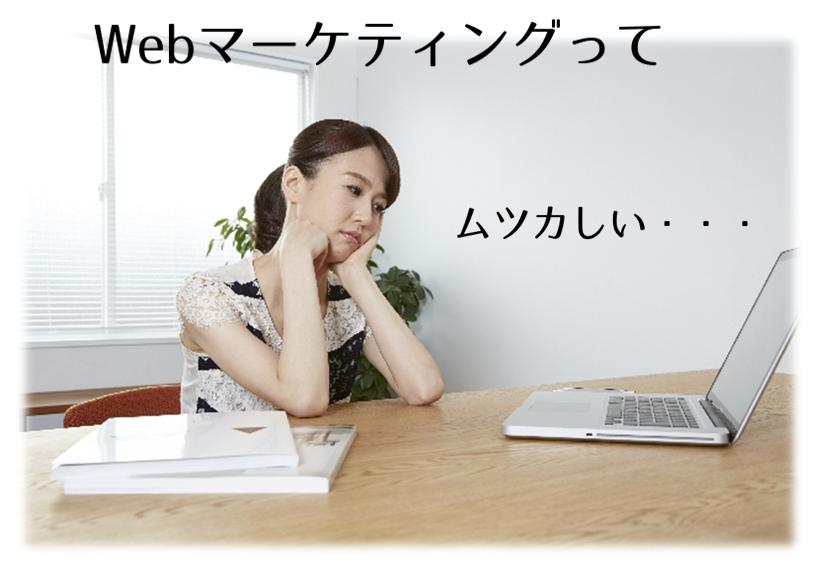 Webマーケティングってムツカシイ